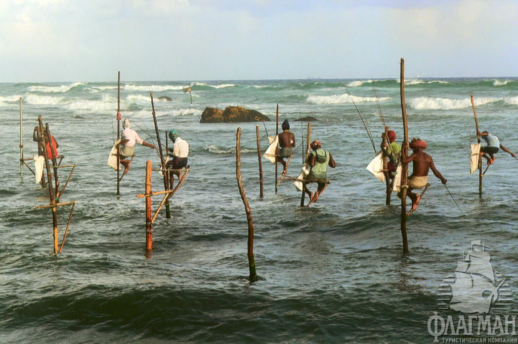 дейлики в даларане на рыбалку